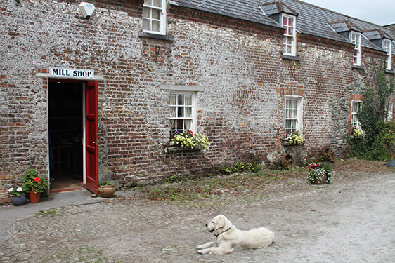 Kerry Woollen Mills - South of Ireland Knitting Tour